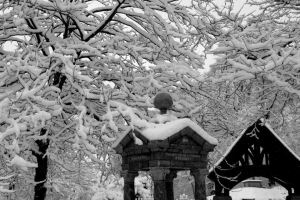 M.LIN snow