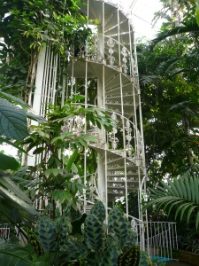 EM Castellan - Kew Gardens - Inside the Palm House