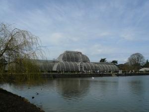 EM Castellan - Kew Gardens - Palm House