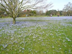 EM Castellan - Kew Gardens
